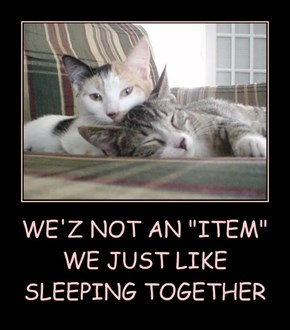 "WE'Z NOT AN ""ITEM"" WE JUST LIKE  SLEEPING TOGETHER"
