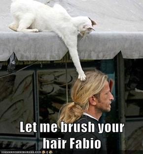 Let me brush your                           hair Fabio