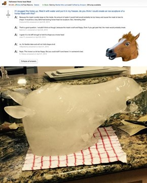 They Said it Couldn't be Done: A Horse Head Ice Sculpture