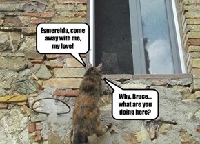 Esmerelda, come away with me, my love!