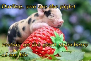 Darling, you are the piglet  resting on the giant strawberry of my life