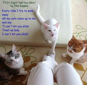 """""""Treats Time"""" (TTO I Can't Tell You Why"""" by The Eagles)"""