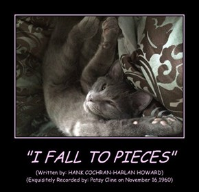 """""""I FALL TO PIECES"""""""