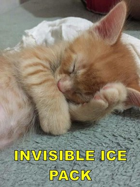 INVISIBLE ICE PACK