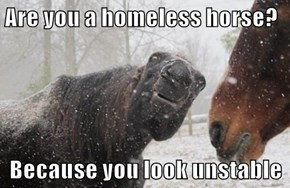 Are you a homeless horse?  Because you look unstable