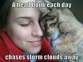 A head bonk each day   chases storm clouds away
