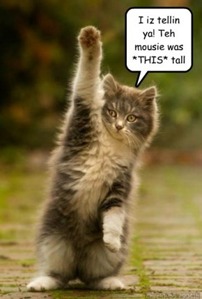Tall tails...
