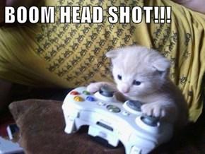 PWNED By a Kitten, Son!
