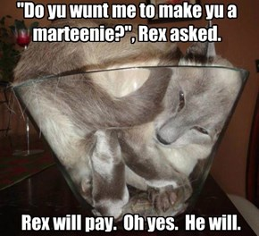 """Do yu wunt me to make yu a marteenie?"", Rex asked."