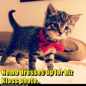 Nemo dresses up for hiz Klass photo..