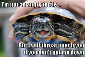 I'm not an angry turtle...  But I will throat punch you                if you don't put me down