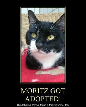 MORITZ GOT ADOPTED!