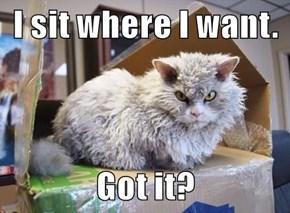 I sit where I want.  Got it?