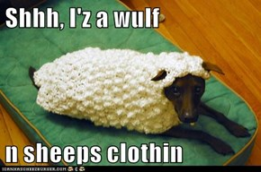 Shhh, I'z a wulf   n sheeps clothin
