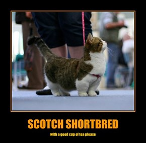 SCOTCH SHORTBRED