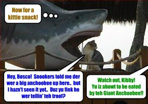 The Easter Anchoobie Hunt - Kibby meets up wiff teh Giant Anchoobie!!