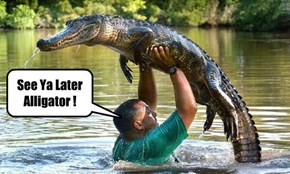 After while Crocodile!