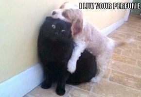 I LUV YOUR PERFUME