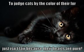 To judge cats by the color of their fur  just isn't fair because their hearts are pure!