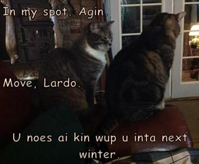 In my spot. Agin.  Move, Lardo.  U noes ai kin wup u inta next winter.
