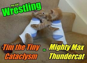 Pro Cat Wrestling!