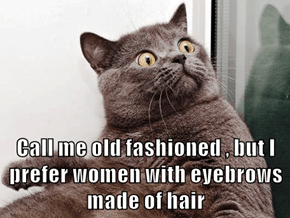 Call me old fashioned , but I prefer women with eyebrows made of hair