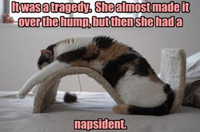 It was a tragedy.  She almost made it over the hump, but then she had a        napsident.