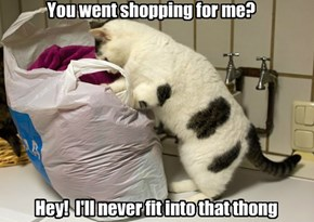 You went shopping for me?