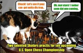 Teh KuppyKakes Chess Klub iz a bery popular rekreashunal actibity..