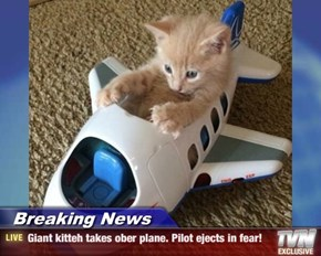 Breaking News - Giant kitteh takes ober plane. Pilot ejects in fear!