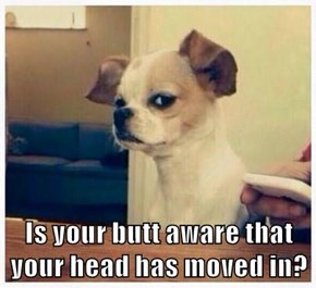 Is your butt aware that your head has moved in?