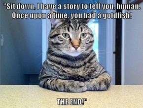 """""""Sit down, I have a story to tell you, human. Once upon a time, you had a goldfish!   THE END!"""""""