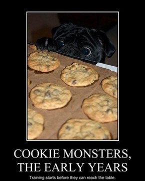 COOKIE MONSTERS, THE EARLY YEARS