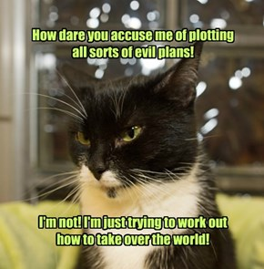 How dare you accuse me of plotting all sorts of evil plans!          I'm not! I'm just trying to work out how to take over the world!