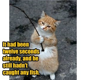 It had been  twelve seconds already, and he  still hadn't  caught any fish.