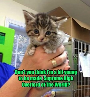 Don't you think I'm a bit young  to be made  Supreme High Overlord of The World?