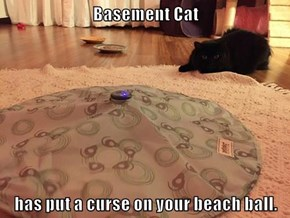 Basement Cat  has put a curse on your beach ball.