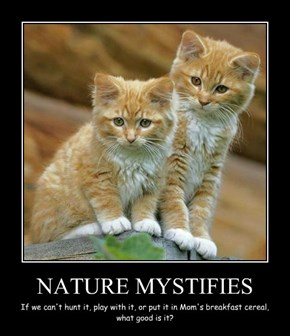 NATURE MYSTIFIES