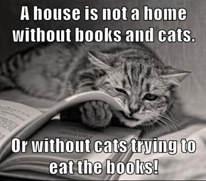 A house is not a home without books and cats.  Or without cats trying to eat the books!