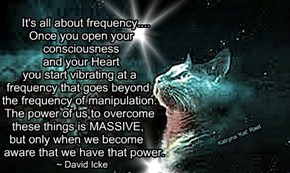 It's all about frequency....          Once you open your          consciousness          and your Heart         you start vibrating at a        frequency that goes beyond         the frequency of manipulation.         The power of us to overcome         t