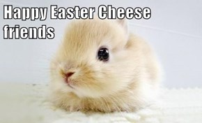 Happy Easter Cheese friends