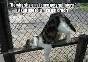 """He who sits on a fence gets splinters.""  U kud hab told meh dat erlier!"