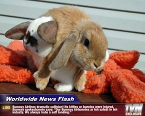 "Worldwide News Flash - Bunway Airlines dramatic collision! No kitties or bunnies were injured. Bunway spokesbunnie says: ""Our Bunway Airbunnies ar teh safest in teh industy. We always habs a soft landing."""