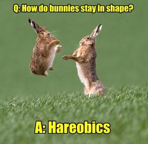 Very Bunny