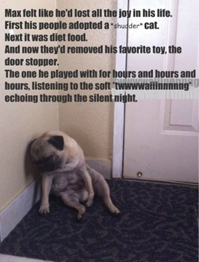 Max felt like he'd lost all the joy in his life. First his people adopted a                    cat.  Next it was diet food. And now they'd removed his favorite toy, the door stopper. The one he played with for hours and hours and hours, listening to the s