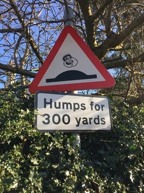 Can't Even Stop These Humps