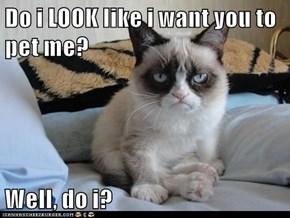 Do i LOOK like i want you to pet me?  Well, do i?