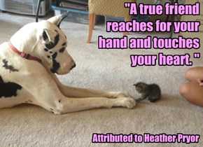 """A true friend reaches for your hand and touches your heart. """