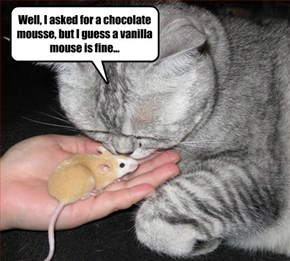 Mousse, Mouse, whatevs...