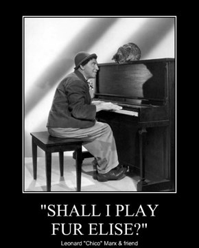 """SHALL I PLAY FUR ELISE?"""